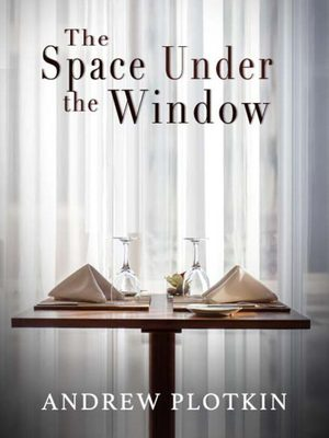 Cover for The Space Under the Window.