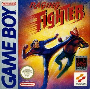 Cover for Raging Fighter.