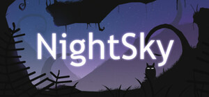 Cover for NightSky.