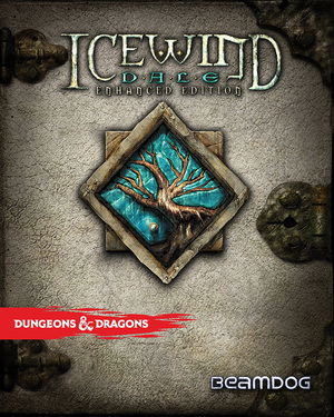 Cover for Icewind Dale: Enhanced Edition.