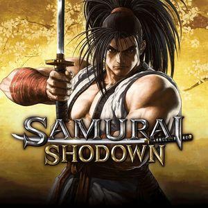 Cover for Samurai Shodown.