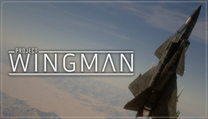 Cover for Project Wingman.
