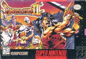 Cover for Breath of Fire II.