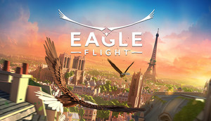 Cover for Eagle Flight.