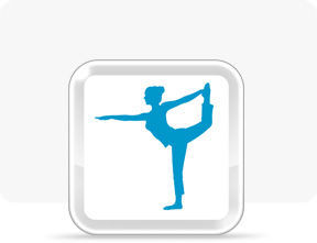 Cover for Wii Fit U.