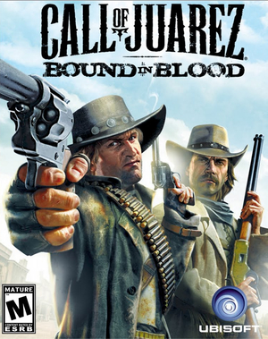 Cover for Call of Juarez: Bound in Blood.